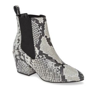 Matisse Snake Embossed Morgan Chelsea Boot Grey
